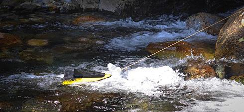 20131121-hydrobee-1