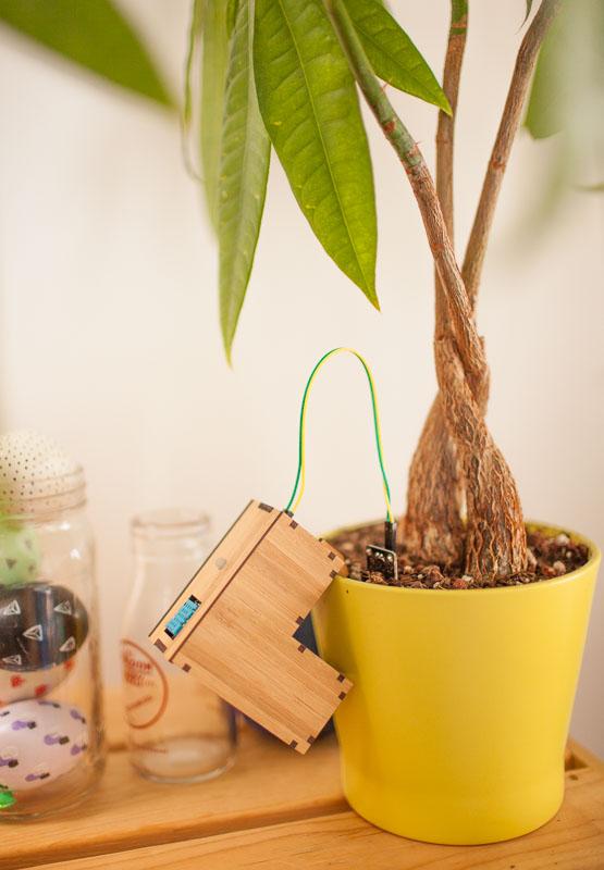 plant-friends_13