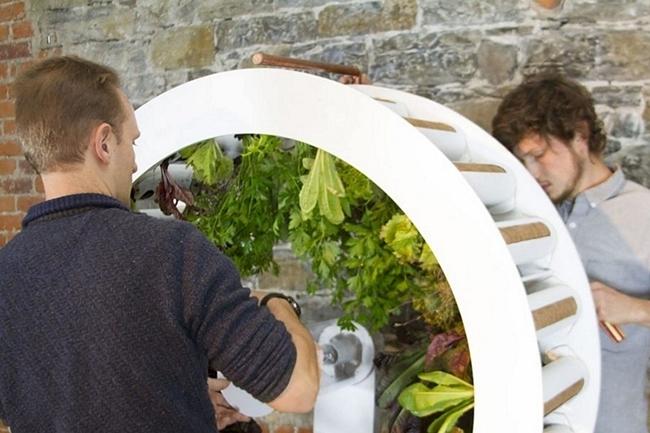 我的菜园是摩天轮!一次能种80种植物的OGarden