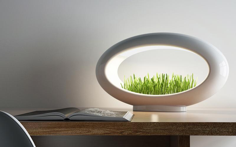 Grasslamp植物灯