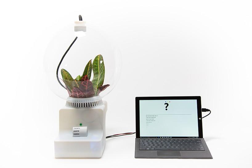 Helene Seiner打造植物对话系统Project Florence