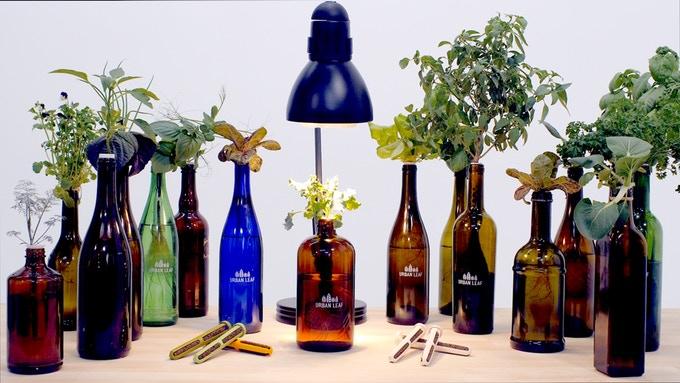 喝完酒来种菜!世界最小花园Urban Leaf